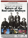 Return of the Red Lake Walleye